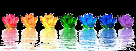 Chakra Lotus flower